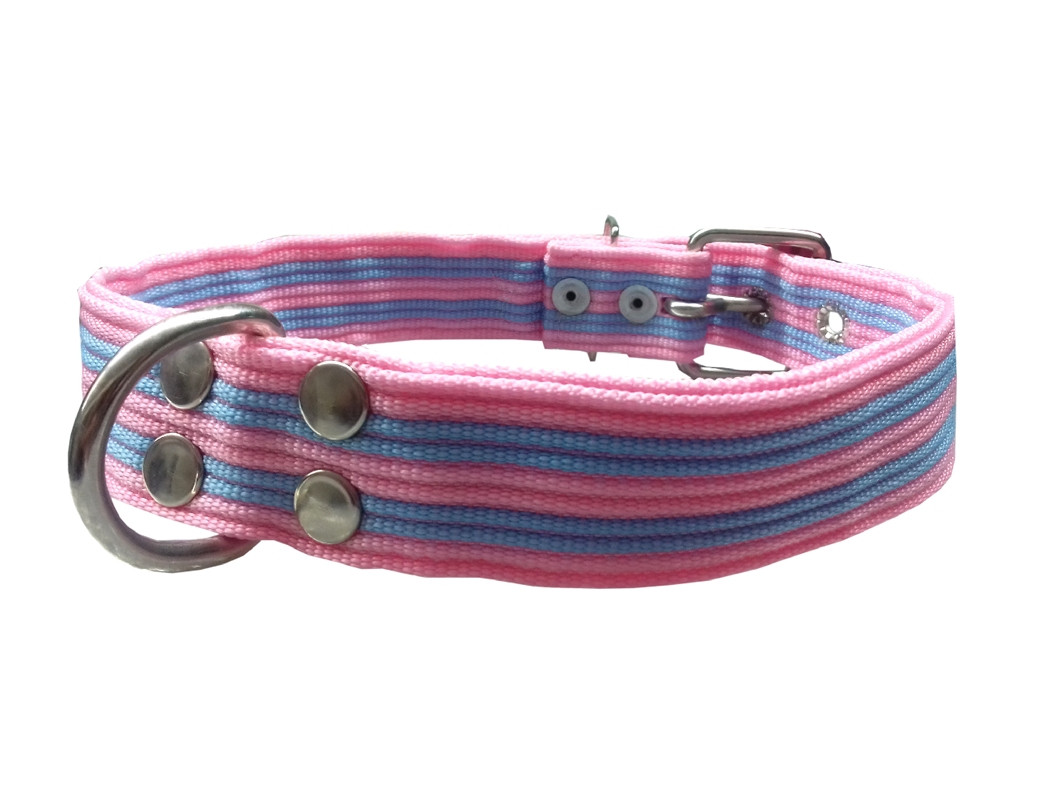 Collar pitbull nylon rosa y azul