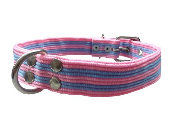 Collar pitbull nylon rosa y azul