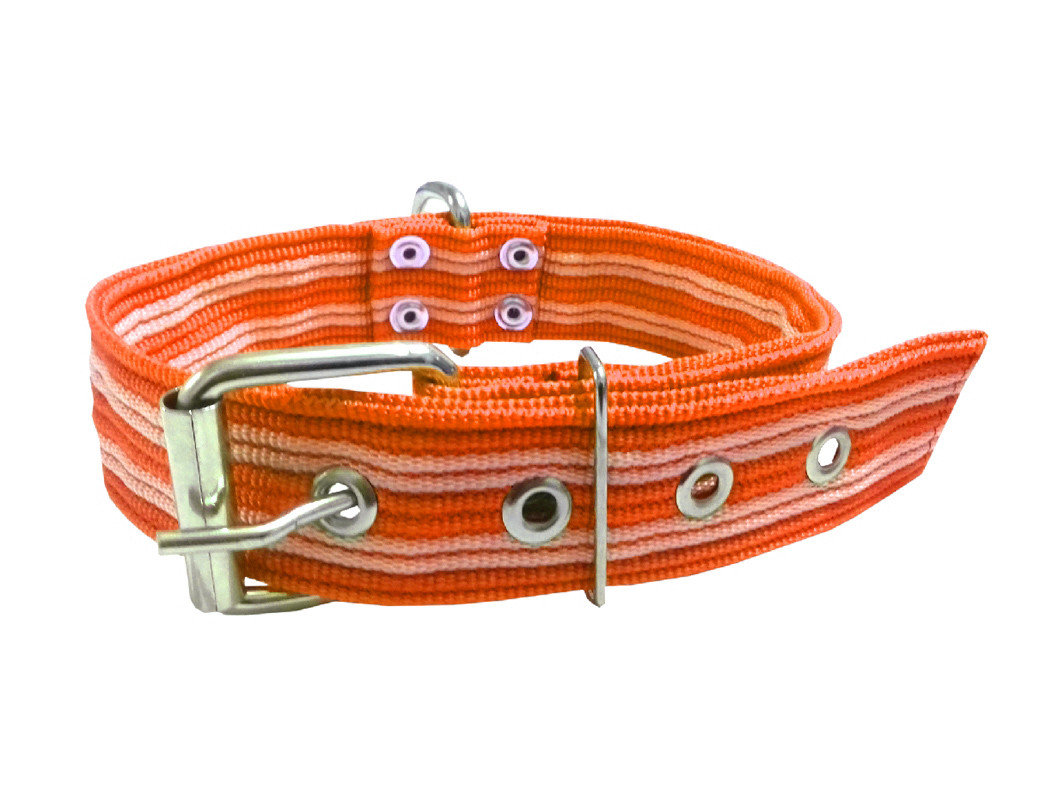 Collar pitbull nylon naranja