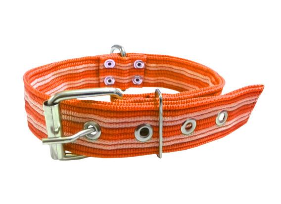 Collar pitbull nylon naranja