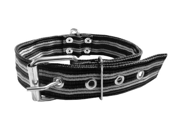 Collar pitbull nylon negro