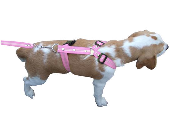Correa con pechera rayada mediana rosa pastel