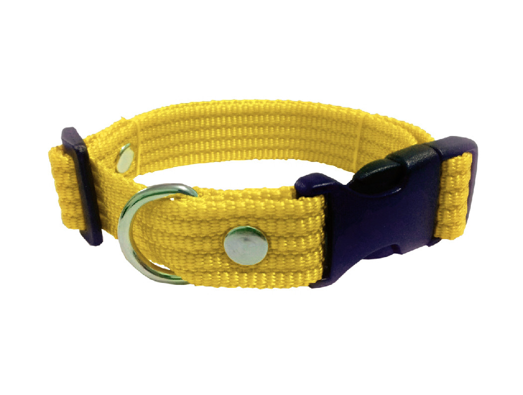 Collar liso mediano amarillo