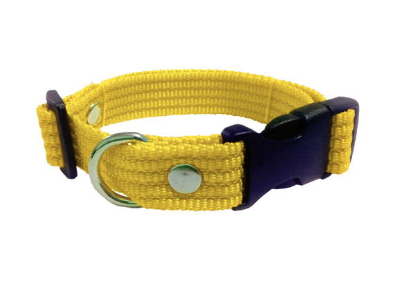 Collar liso mediano amarillo