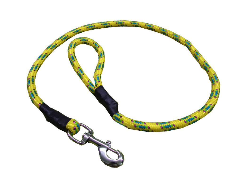 Correa de alpinista amarillo