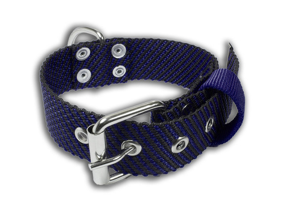 Collar Van Damme negro con azul fuerte