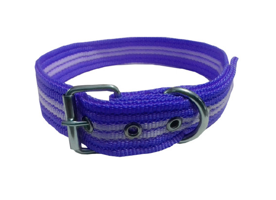 Collar rayado mediano con hebilla azul