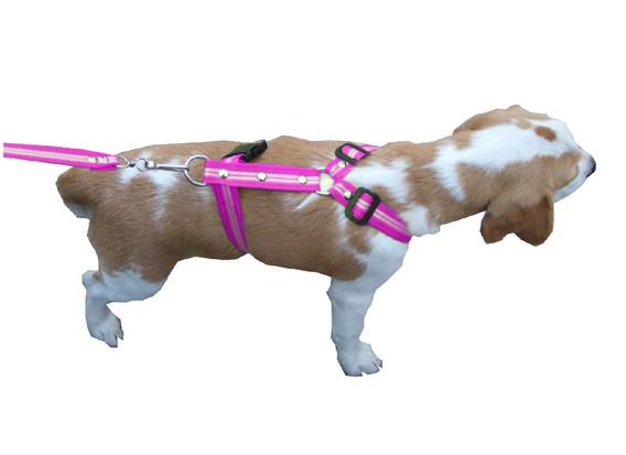 Correa con pechera rayada mediana rosa