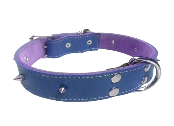 Collar pitbull con picos azul