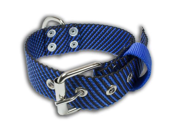 Collar Van Damme negro con azul