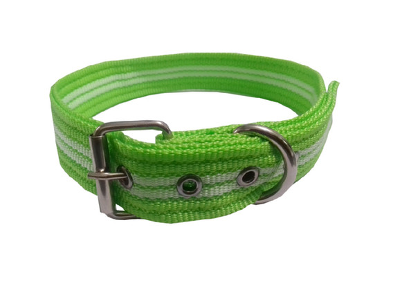 Collar rayado mediano con hebilla verde