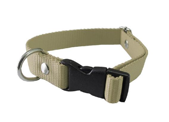 Collar americano gris verdoso