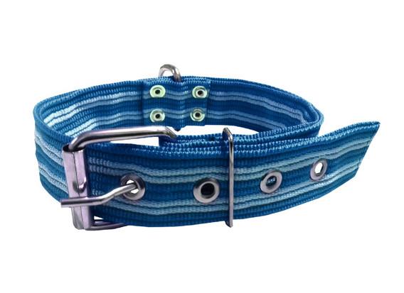 Collar pitbull nylon azul fuerte