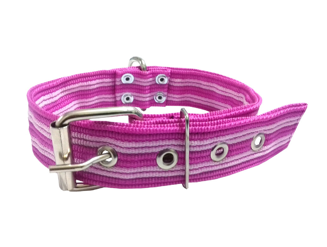 Collar pitbull nylon rosa