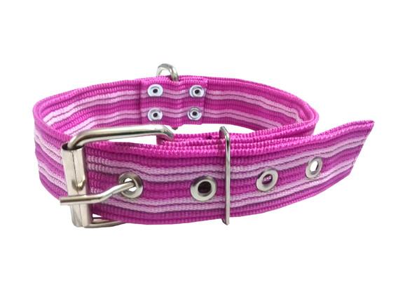 Collar pitbull nylon rosa