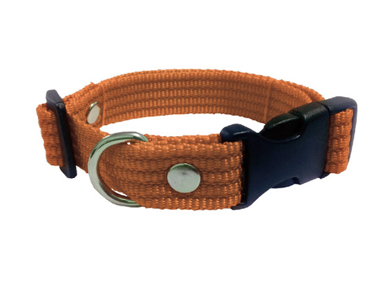 Collar liso mediano cafe