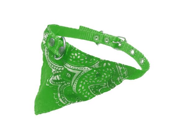 Paliacate chico verde