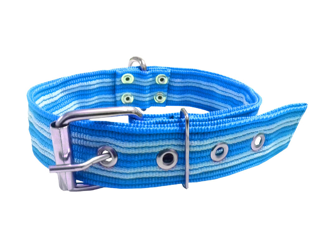 Collar pitbull nylon azul