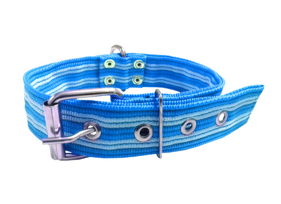Collar pitbull nylon azul