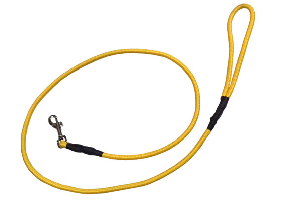 Correa alpinista delgada amarilla