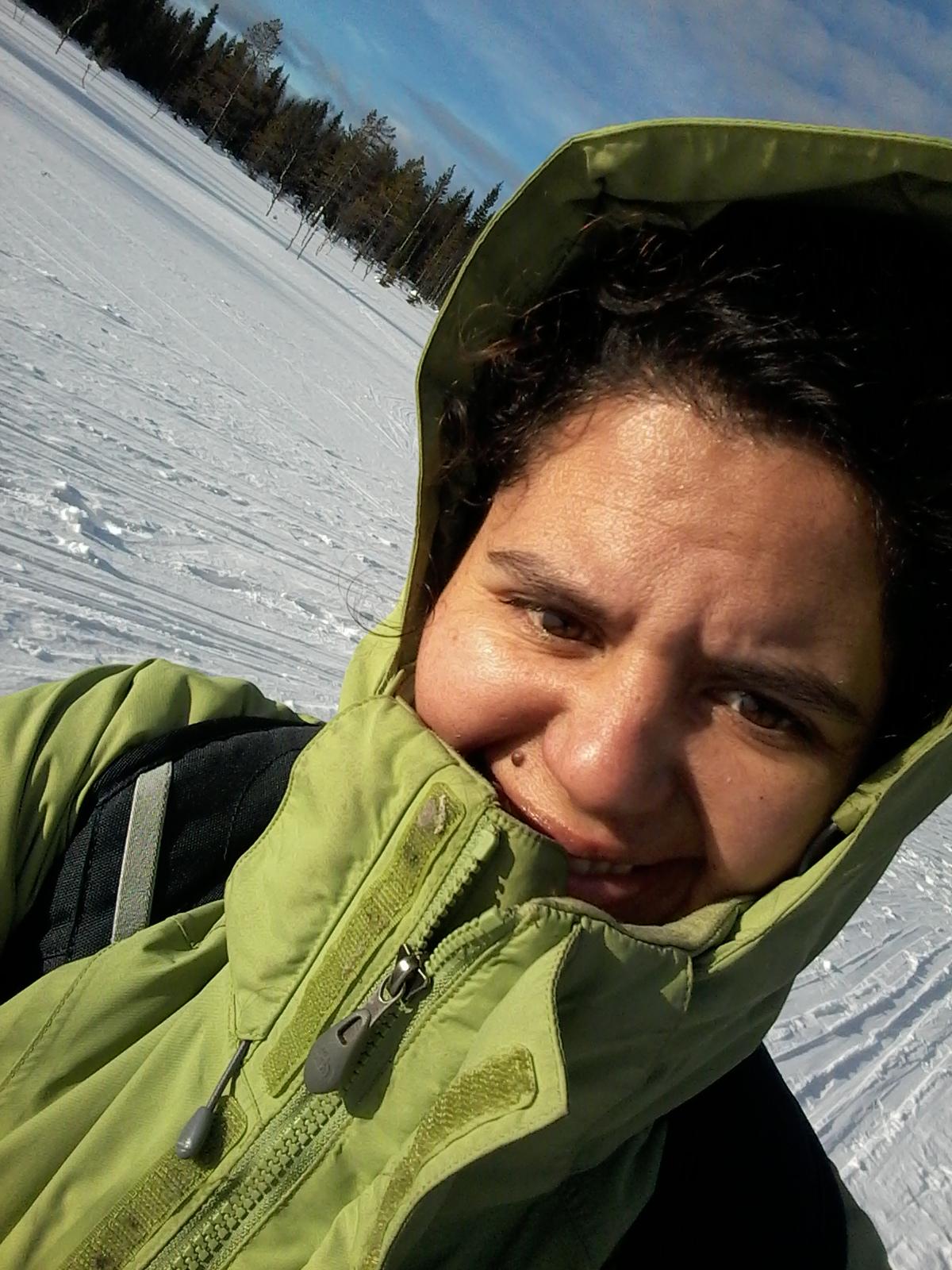 Ski guiding
