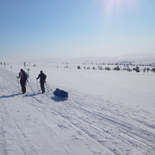 Lapland Expeditions