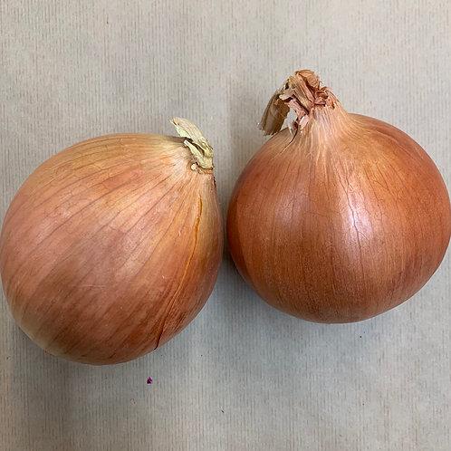 Onions Spanish 500g