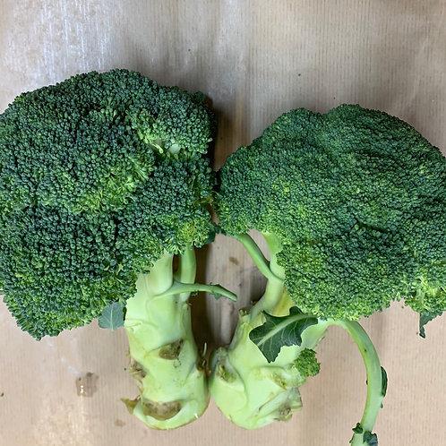Broccoli 500g