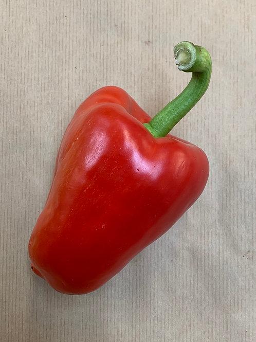 Pepper Red 100g