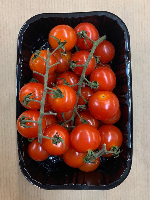 Tomato Cherry Vine