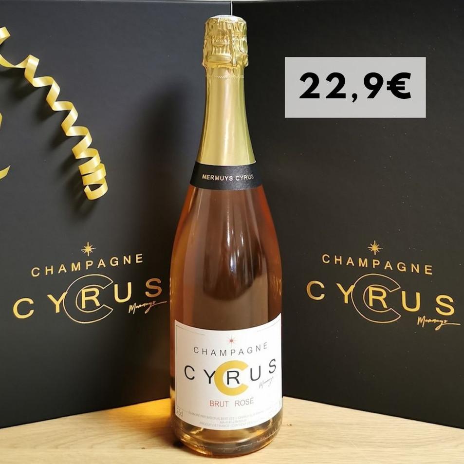 Champagne Rosé 75 Cl - 12°