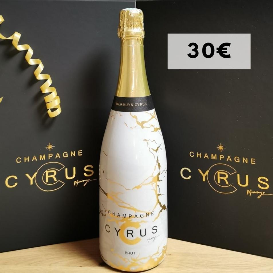 Champagne Millesimé 75 Cl ( Edition Limitée ) - 12°