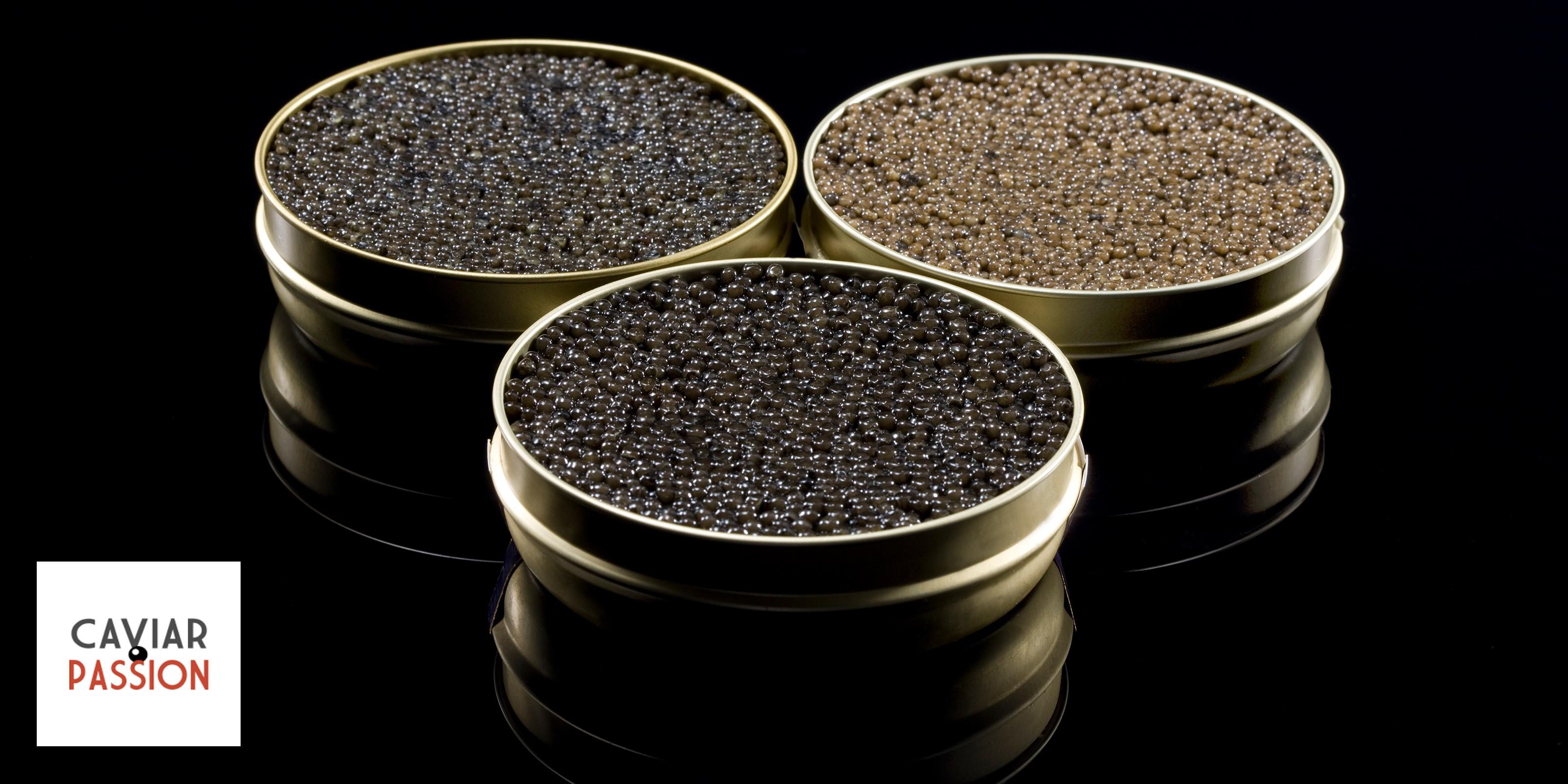 caviar-bande