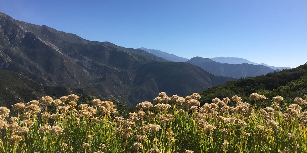 Hike to Mount Baldy (Advanced Hikers Only)
