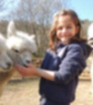 pet therapy alpaca bambini