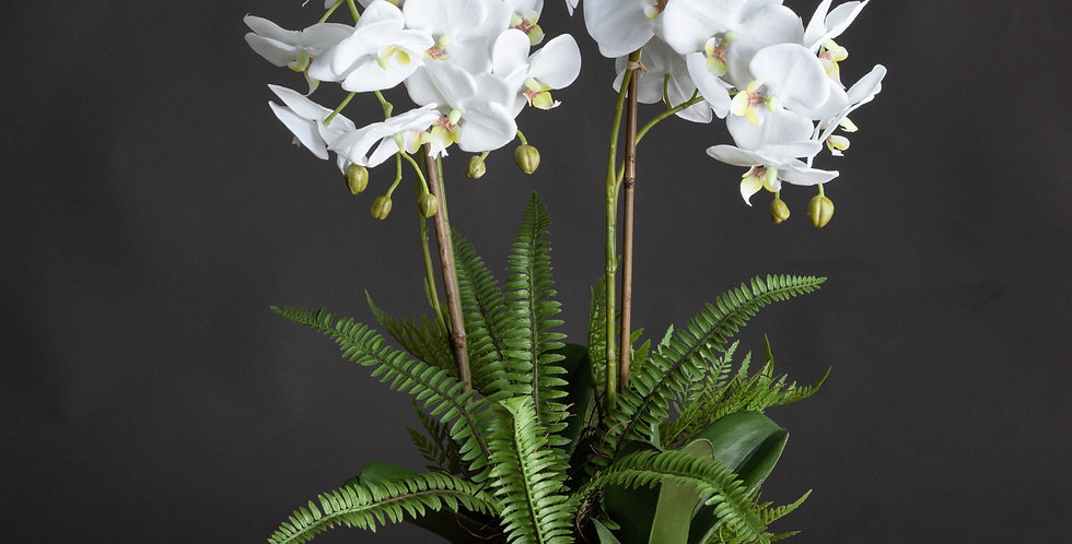 large fake white orchid and fern garden arrangement
