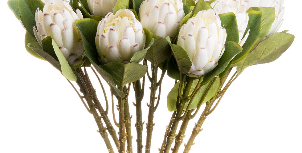 white fake protea flower stem