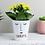 Thumbnail: Personalised 'Mrs Face' Plant Pot