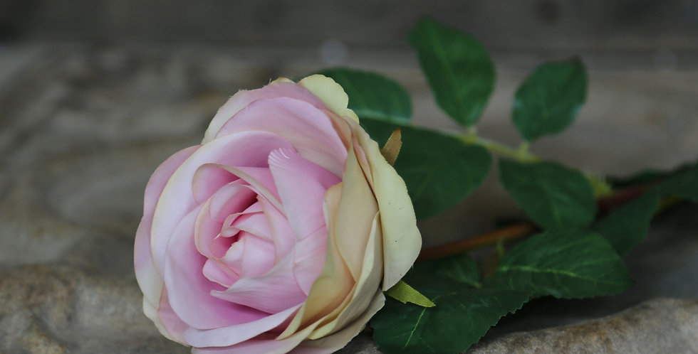 Beautiful pale pink artificial rose flower on a long stem