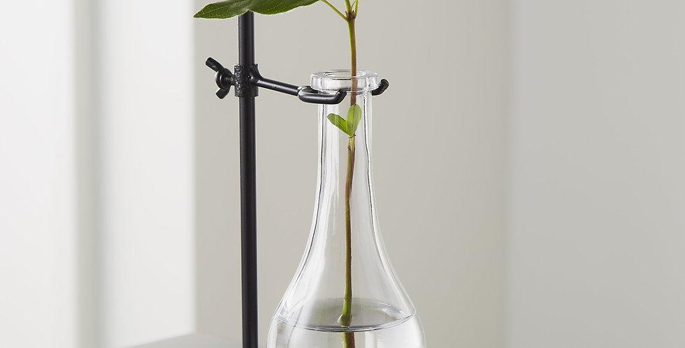 laboratory style flask in holder for plants