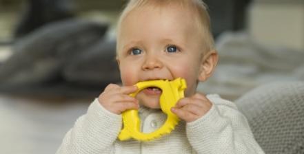 squidge & peep sensory teether