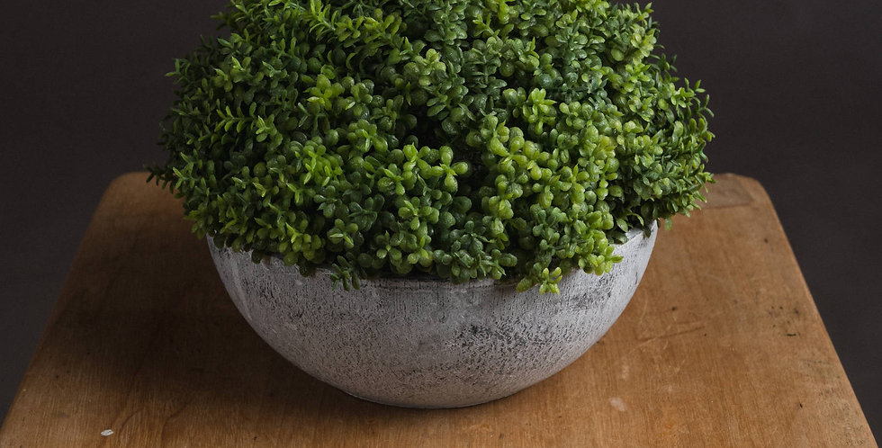 small faux hebe globe pot