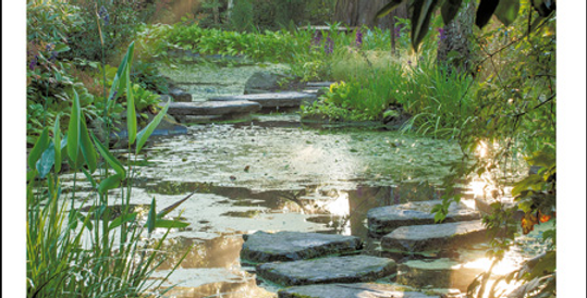 sympathy card showing peaceful image pond with stepping stones