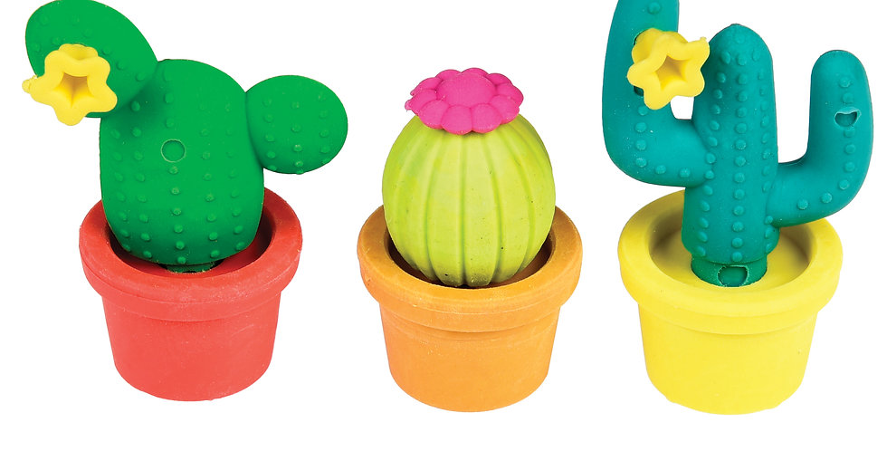 Set of colourful cactus in pot erasers