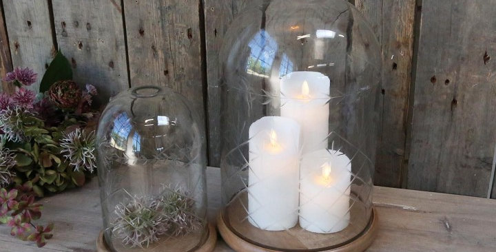 Beautifully etched glass dome with mango wood base perfect for displaying candles and plants