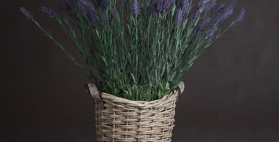 Large Lavender Spray