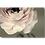 Thumbnail: Ranunculus II Canvas Wall Art