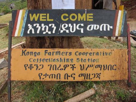 Kebele Kebele Kebele Kebele, Ethiopia Yirgacheffe Konga Coffee Bean