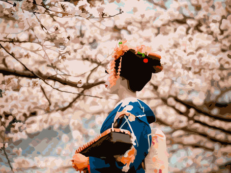 The Kyoto from South America, Colombia La Esperanza Geisha Hanami