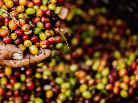 Mythical Interesting Facts About Coffee